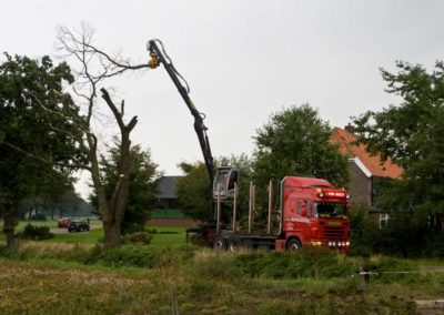 GMT035 controlled tree removal with truck crane
