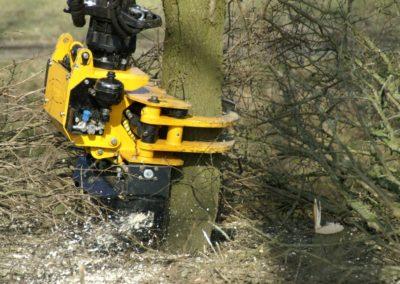 GMT035 grapple saw felling on Kubota