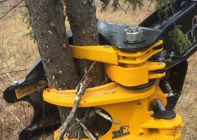 TMK tree shear multi-stem collector