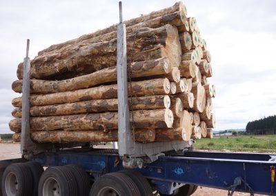 TU on NZ log truck Gisborne, under-bolster mount
