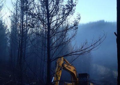 TMK tree shear fire cleanup